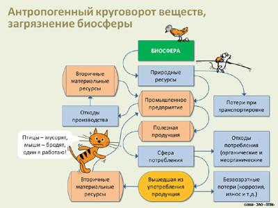 источники загрязнения биосферы:
